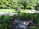千葉城公園