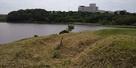 チャシから春採湖を望む
