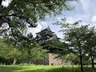 梅雨明け間近の松江城天守…
