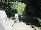 本丸跡への階段…