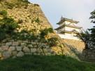 天守台と坤櫓