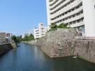 外堀沿いの石垣(静岡病院の横)…