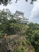 岐阜城を見上げて。
