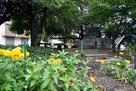槙島城記念碑 (槇島公園)…