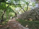 四ツ門付近の石垣…