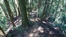 林道からの登城道…