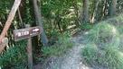林道からの登城口…