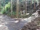 右に曲がると登山道です…