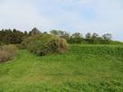 主郭西側の空堀と北側の矢竹…