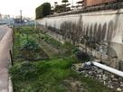 石垣と堀跡