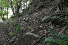 天守台側面の石…