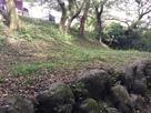 三の洞側から見た本丸跡…