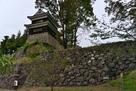 尼ヶ淵から南櫓を見上げる