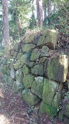 実城裏側の残存石垣…