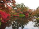 丑寅櫓付近の水堀と紅葉…