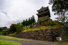 尼ヶ淵から南櫓、西櫓を見上げる