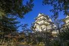 伊賀上野城 秋景色…