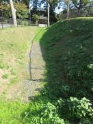 堀から神足神社を観る…