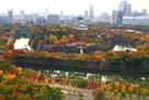 紅葉と壮大な石垣を、クリスタルタワーから…