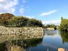 お堀と石垣