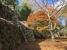 本丸石垣と補強石垣…