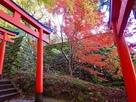 秋の登城路