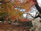 東御門跡と月見櫓跡と紅葉…