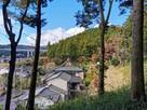仙年寺と城山