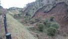 土砂に埋まってしまった西の丸畝堀