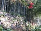 秀次館跡の石垣…