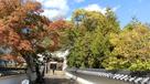秋色の攻城路