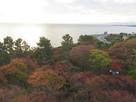 天守より眺める琵琶湖…