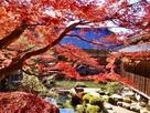 庭園と紅葉