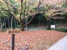 吉田郷士館からの登城口…