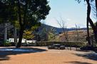 武田神社 鳥居と富士山…