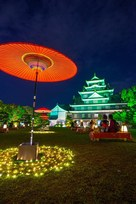 夜の岡山城