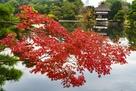 紅葉と衆楽園