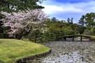 衆楽園(春)