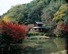 近水園(秋)