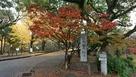 城跡石碑と紅葉…