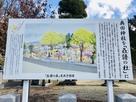 奥田神社を「叒譜の杜(じゃくふのもり)」…