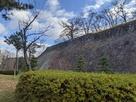 二ノ丸北側石垣…