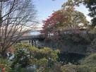 出丸石垣と橋