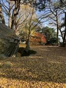 詰丸の巨石と貯水池と…