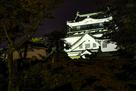 岡崎城ライトアップ…