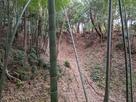 本丸と櫓跡の南側空堀…