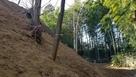 2郭の水堀跡
