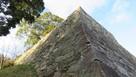 西南角の石垣