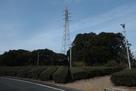 大手側入り口付近の鉄塔と茶畑…