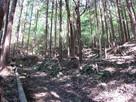 石垣跡の残る登城路